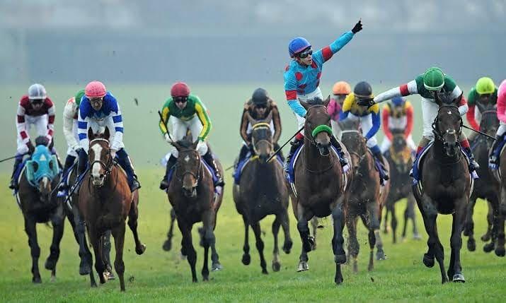 有馬記念はサイン競馬の宝庫