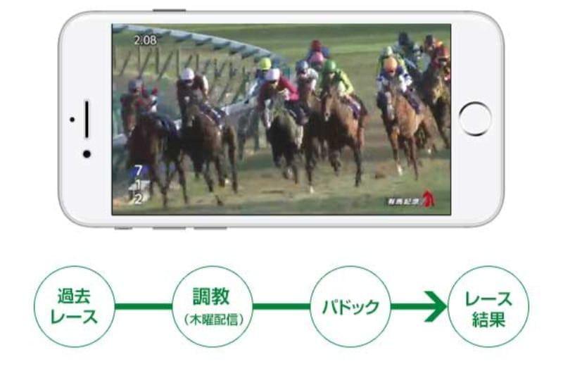 レース・調教・パドック動画
